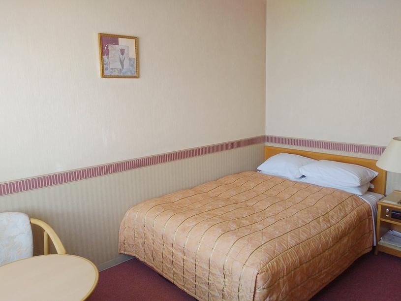 【ダブルルーム】カップル・ご夫婦におススメ♪17平米、140cm幅ベッドでゆっくりお過ごしください♪