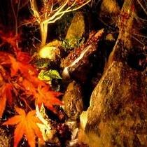 小川と滝と紅葉