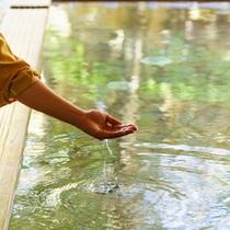 天然温泉『霊雁泉・館の湯』