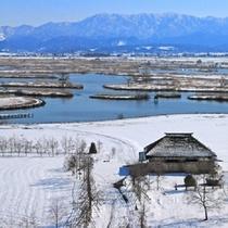『日本一の野鳥の楽園 福島潟』≪当館より車で約60分≫
