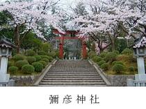 周辺観光 越後一宮『弥彦神社』