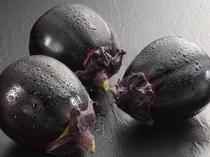 糸魚川特産高級ブランド茄子「越の丸茄子」