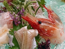 鮮魚地魚五種氷器盛り