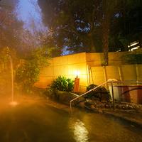 【部屋食ディナー:美肌湯コース】お部屋で特選ディナー&滑らかな温泉を堪能♪
