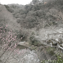 【景観】小鮎川のせせらぎと四季折々の風景が、心に癒しと安らぎを与えてくれます