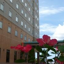沖縄の日差しを浴びたハイビスカスがあなた様をお出迎え致します。