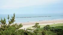 目の前には広い砂浜!お散歩最高です!!