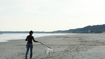 広い砂浜をお散歩!