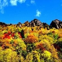日本一早い黒岳の紅葉