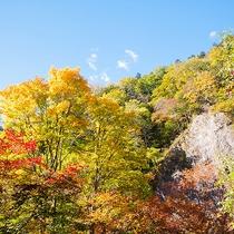 壮大な峡谷と色鮮やかな紅葉の絶景が広がる層雲峡