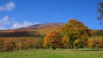 笹ヶ峰高原の秋