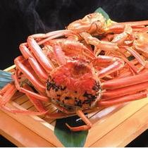 冬の味覚の王者『越前蟹』