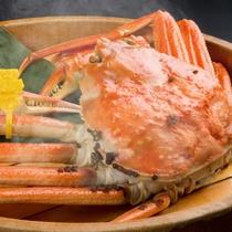熱々の越前蟹をご賞味ください