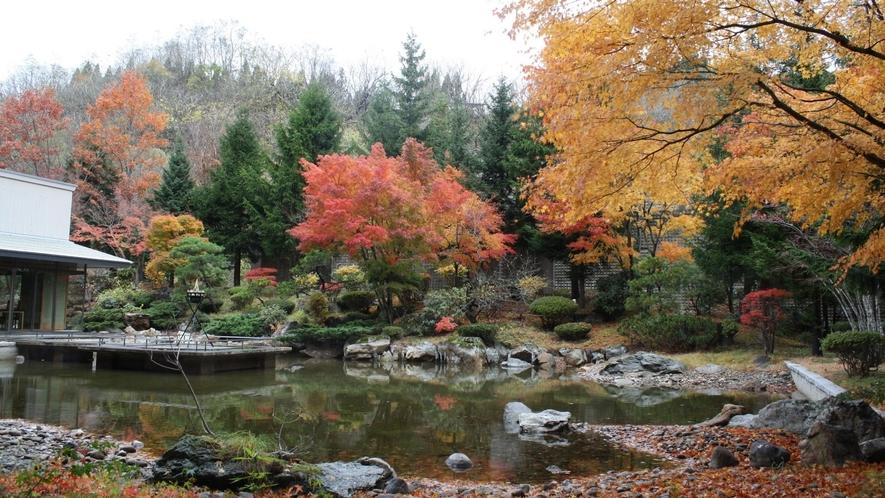 中庭(秋の紅葉)