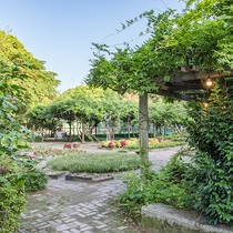 *【東庭園】桜、藤、バラ、菖蒲、コスモス、椿...など、 1年中、たくさんの花を楽しめます。