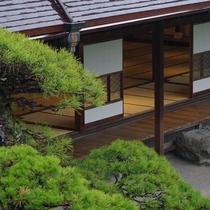梅雨時期の松濤園はいつもとは違った魅力があります。
