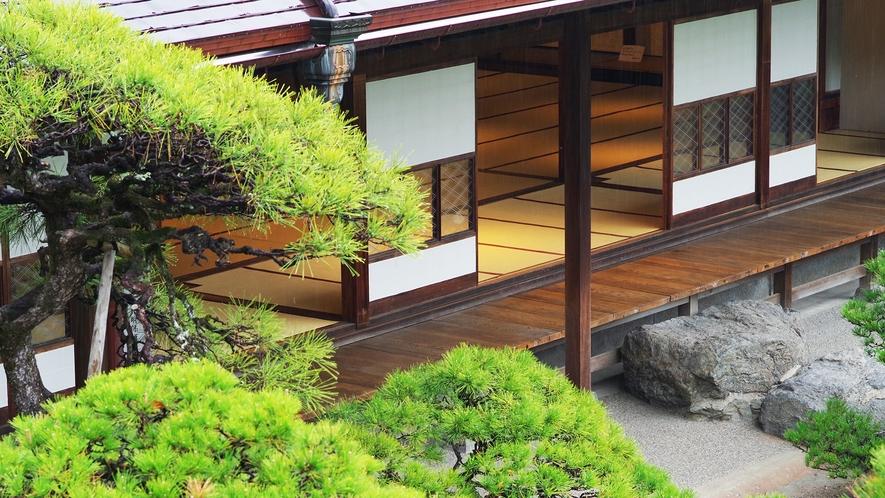 *梅雨時期の松濤園はいつもとは違った魅力があります。
