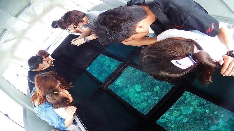 【アオサンゴグラスボート】