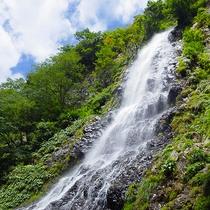 【天滝】日本の滝百選に選べれた高さ98mの名爆からはマイナスイオンを(当館より車で約90分)