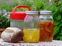 季節の果物で作る天然酵母