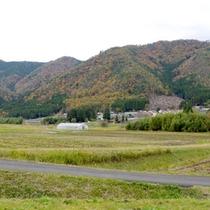 *当館の目の前には美山の素朴な自然が広がります^^