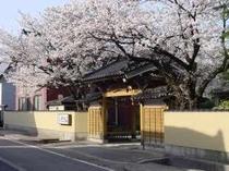 4月 桜満開の時期になります。だいたい中旬位が見ごろとなります。