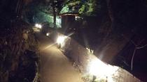 夜の露天風呂(へ行く道)