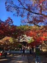 秋の修善寺 お寺