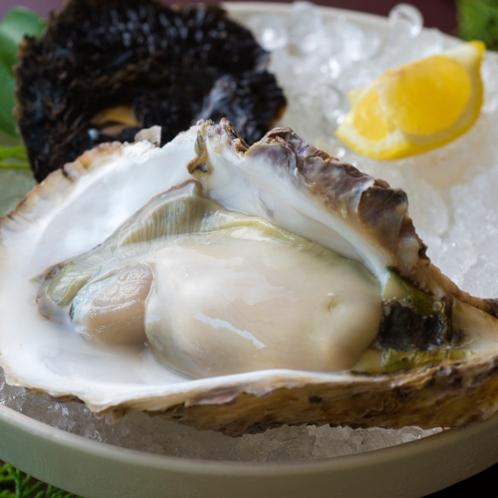 【追加料理】岩牡蠣(夏季) ※イメージ