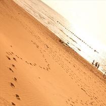 海辺のお散歩♪