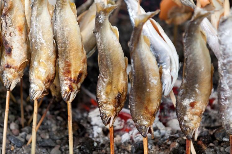 ヒメマスの串焼き