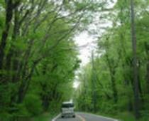 緑がいっぱい「那須高原」