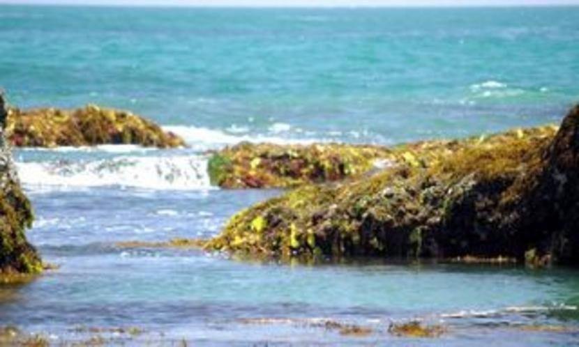 岩場の瀬戸海岸