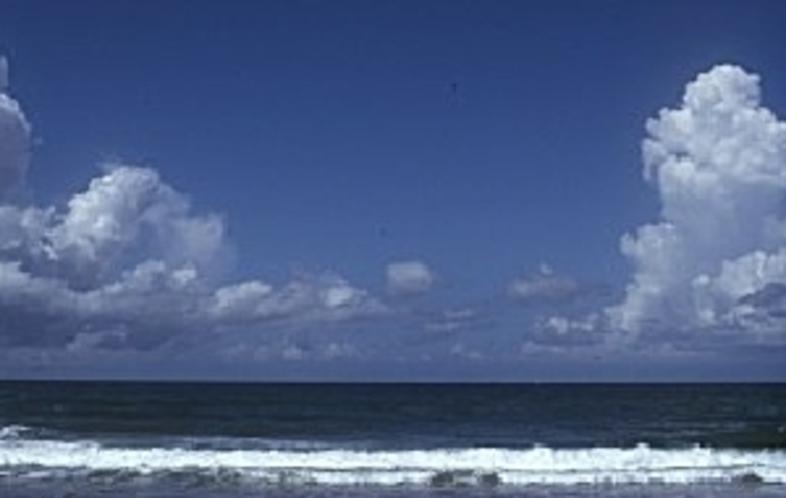 常夏の瀬戸海岸