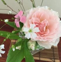 庭の花を摘んで♪