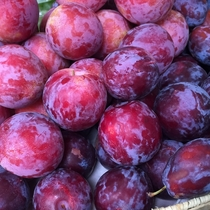 【よませ温泉朝市】にて夜間瀬の採れたて新鮮お野菜&果物を販売しております。(種類たくさん♪プラム)