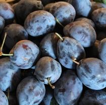 【よませ温泉朝市】夜間瀬の採れたて新鮮お野菜&果物を販売しております。当果樹園のプルーン(9月)