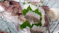 【夕食】鯛のお造り