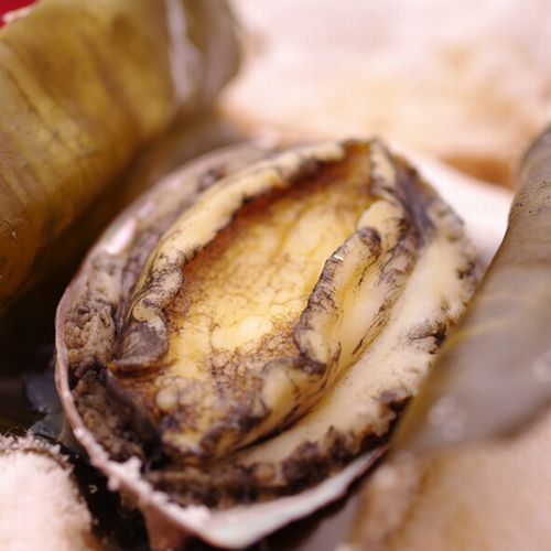 蝦夷アワビの塩釜焼き