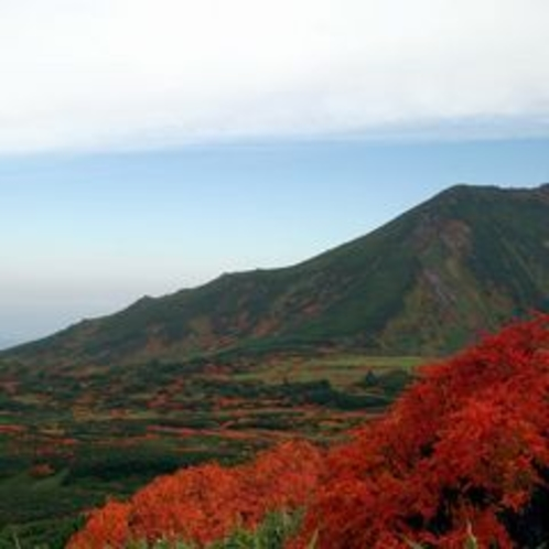 紅葉の旭岳