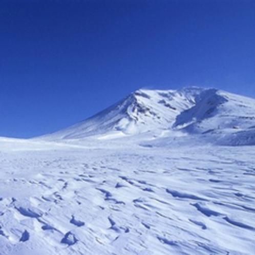 厳寒の旭岳…。冬の方が神秘的です。