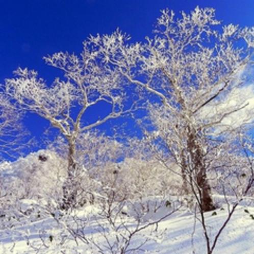 湧駒荘近辺の風景です
