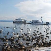 猪苗代湖の遊覧船 かめ丸、白鳥丸