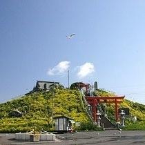 ≪蕪島≫ (かぶしま) うみねこの繁殖地として有名です。
