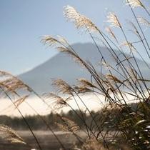 【〜 羊岳百景 〜 初秋の羊蹄山】