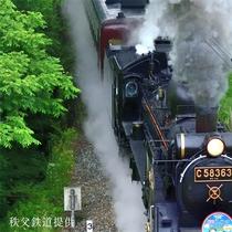 秩父鉄道SLパレオエクスプレス:車窓からの景色を楽しめます