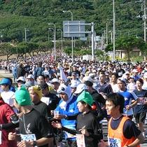 *【那覇マラソン】順位も大事ですが、まずは完走を!