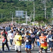 *【那覇マラソン】沖縄の風と共に走り抜ける!