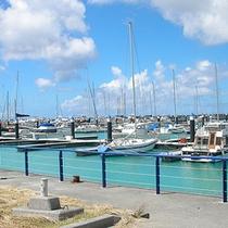 *【宜野湾港マリーナ】青い海にボートがたくさん並んでいます。