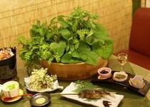 料理(山菜)